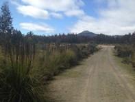 Picture of Lot 1 90 Mt Barrow Road, Nunamara