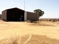 Picture of Farm Kalannie, Kalannie