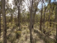 Picture of 4 King Jarrah Rise, Sawyers Valley