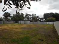 Picture of Lot 742 Schuster Road, Freeling