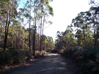 Picture of Lot 1 Calders Gully Road, Mangana