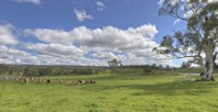 Picture of 64 Fairview Road, Hahndorf