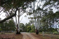 Picture of Lot 111/8114 Bussell Highway, Metricup