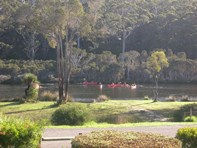 Picture of 4 Riverside Drive, Nornalup