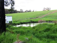 Picture of Thomson Brook