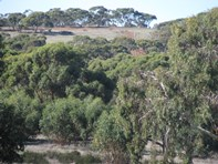 Picture of Lot 11 Cantabilling Road, Hill River