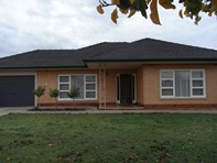 Picture of 12 Stewart Street, Hectorville