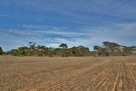 Picture of Lot 55 & 59 Moorlands Road, Tailem Bend