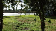 Picture of 50 Scrubby Flat Shack Road, Purnong