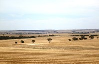Picture of - Haese and Bushby's Roads, Kulin