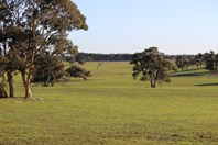 Picture of Lot 2 Naracoorte Road, Lucindale