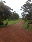 Picture of 585 Red Gully Road, Nunile