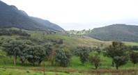 Picture of 4433 Mckillops Road, Deddick Valley