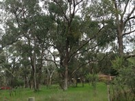 Picture of 9 Balwinia Road, Greenfields
