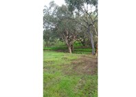 Picture of Lot 54 Adams Road, Red Hill