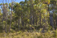 Picture of 17 Lombo View, Yallingup