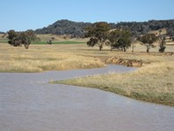 Picture of 629 Sutherland Road, Cowra