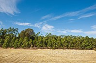 Picture of 8/126 Caves Road, Wilyabrup