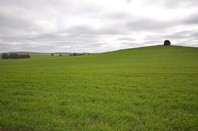 Picture of FOR LEASE Curio Highway, Eudunda