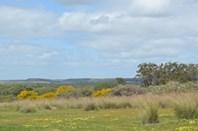 Picture of 341 Nanson-Howatharra Road, Nanson