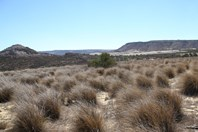 Picture of Lot 276 Pitchford Crest, White Peak