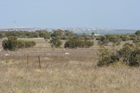 Picture of Lot 1 and 2 Pygery-Pt Kenny Road, Port Kenny
