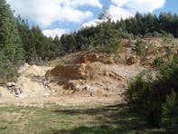 Picture of . Cuckoo Hill Road, Ringarooma