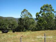 Picture of - Gunns Plains Road, North Motton