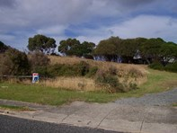 Picture of Lot 81 Ross Avenue, Currie, King Island