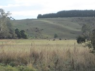 Picture of Lot 3, 59 Doaks Road, Lilydale