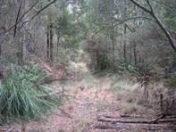 Picture of 88 Dallys Road, Railton