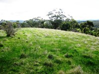 Picture of Lot 51 & 53 Hughes Park Road, Sevenhill