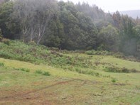 Photo of 265 Coalmine Road, Preolenna - More Details