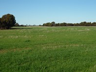 Picture of Lot 2 Goldfields Road, Hines Hill