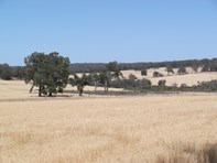 Picture of 8975 Julimar Road, Toodyay