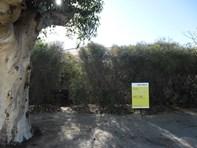 Picture of 17 Robertson Street, Carnamah