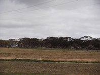 Picture of Lots 801, 802 andamp; 803 Cadoux-Koorda Road, Koorda