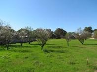 Picture of Lot 121 Langhorne Creek Road, Langhorne Creek