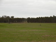 Picture of Lot 2809 Eulup-Manurup Road, Mount Barker