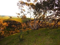 Picture of Lot 2 Stockwell Rd, Yankalilla