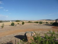 Picture of Lot 802 Gt Southern Highway, York