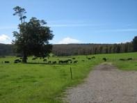 Picture of 179 Maxfields Road, South Nietta