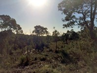 Picture of Prop Lot 2 on Existing Lot 52 Yungarra Drive, Quedjinup