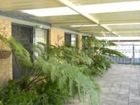 Picture of 40 Tokara Ave, Henley Brook