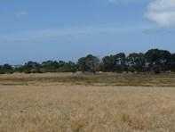 Picture of Lot 102 Coolgardie - Esperance Highway, Myrup