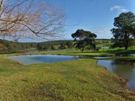 Picture of Lot 2 Gold Gully Road, Nannup