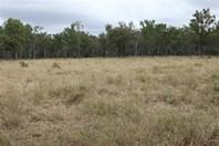 Picture of 1140 Cooinda Road, Dingo