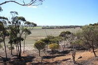 Picture of Lot 13 Kulin-Dudinin, Dudinin