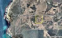 Picture of Lot 101 Swishbush Grove, Wilyabrup