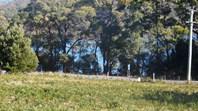Picture of Lot 1 Arthur Highway, Taranna